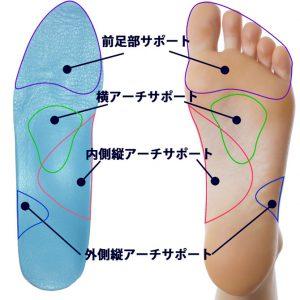 ヴィオレットソールハイヒール用フルタイプオーダーメイドインソールなら足裏の3つのアーチに加えて、立ち姿と歩き姿が美しくなる前足部をサポート